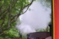 With all the moisture about, steam hangs in the air over the last down train – empty coaching stock.