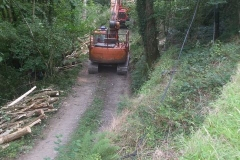 ... with specialist skyline equipment here on the line of the (widened) leat which once fed Ffridd Mill.