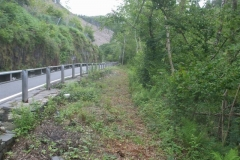 Southern Extension. The highway authority have been very good, clearing vegetation from the trackbed between Pont Evans and …
