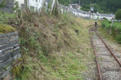 Tuesday, 14.7.2020. The lineside in Corris looks tidier than for a very long time – as Glyn goes for his daily walk!