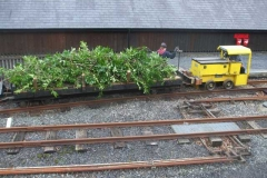 … as another load of cuttings from Corris churchyard hedge arrive for disposal.