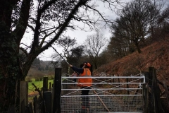 Followed by… lineside management starting at Maes Y Llan gate, working back towards Maespoeth.