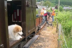 Billy supervises the work from the comfort of the brake van.