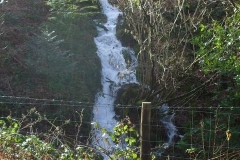 The wet weather of late has a normally docile ditch in The Spinney running at full bore!
