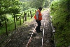 … with Patrick adjusting lineside walling in the spinney.