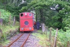 … until the vegetation clearers at Maespoeth have been re-directed to clear the branch – well, the main line, actually!