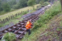 The vegetation clearers can then resume work at Maespoeth ...
