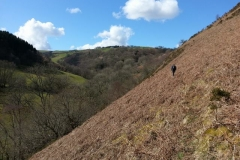 Not all of the route was on clearly defined paths, this was not far from Clywedog Dam.