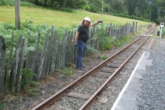 In between trains, Richard in Low-Viz trims back errant growth within station limits …