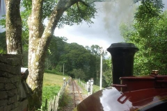The last Up train of the day departs Maespoeth past the Ash tree suffering from die-back (to be felled shortly) …
