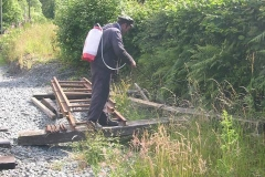 … while Driver Trefor sprays weed-killer in between trains …