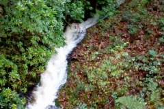 The recent rain has filled up the waterfalls along the route...