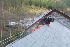 In Corris, the last slates are being secured on the car park side of the Stable roof.