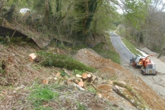 … with the timber being left on our land for disposal.