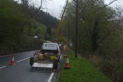 Southern Extension. Pont y Goedwig Deviation Project. Monday, 10.5.2021. Our tree surgeons have arrived to cut down Ash trees suffering from die-back, here overhanging the new filling works, electricity and telephone cables, and the Trunk Road …