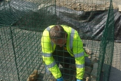 Saturday, 25.4.2020. Caged! Richard and company have assembled some gabion baskets, and after setting them to line, Richard starts filling the first one.