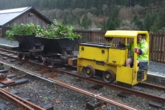 Meanwhile, two waggons were despatched to Corris to collect hedge clippings …