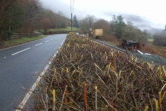 Wednesday, 27.1.2021. Yesterday, the hedge cutting contractors called, vastly improving the vision from the access to the Pont y Goedwig Deviation work site …