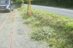 Sunday, 19.7.2020. The Sunday Gang has cut back our roadside bank (and hedge) – you can now see our road signs!