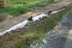 ... before Gareth and Dai turn their attention to building up the stone layer on the section of embankment nearer Maespoeth yard ...