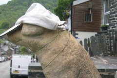 Y Mochyn has put his hat on for the superb sunshine forecast for the weekend.