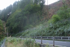 Near Pont Evans, the tree felling under the BETWS project has now become visible from the railway (and road) …
