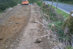 … in the process cutting the roots of the trees which were felled in July.