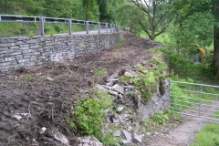 Thursday, 29.5.14. Gwilym James (contractors) have been clearing undergrowth from track bed just north of Tan y Coed, preparatory to rebuilding collapsed sections of the railway retaining wall (which in turn, supports the highway retaining wall).