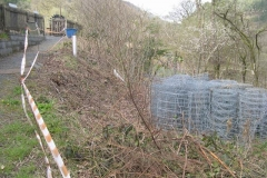 … and a start has been made on clearing the embankment behind the North Platform.