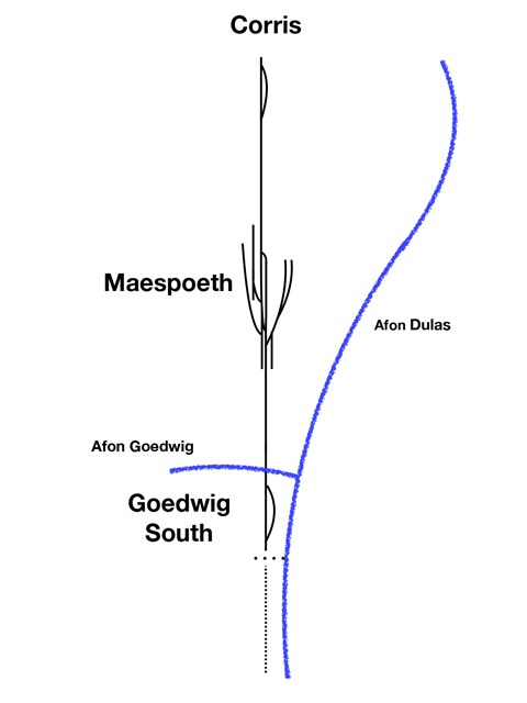 The Plan to Goedwig South
